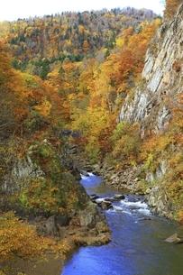 紅葉の定山渓の写真素材 [FYI04772531]