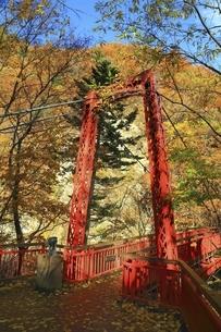 紅葉の定山渓の写真素材 [FYI04772533]