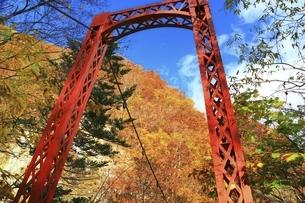 紅葉の定山渓の写真素材 [FYI04772535]