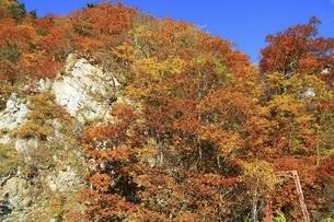 紅葉の定山渓の写真素材 [FYI04772536]