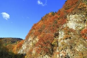 紅葉の定山渓の写真素材 [FYI04772538]