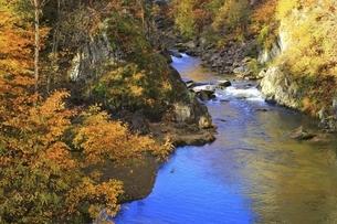 紅葉の定山渓の写真素材 [FYI04772539]