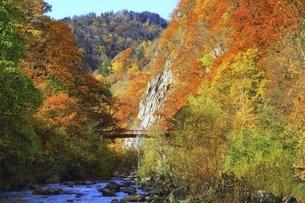紅葉の定山渓の写真素材 [FYI04772545]