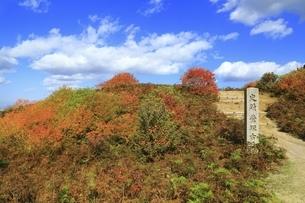 秋の若草山と鶯塚古墳の写真素材 [FYI04772579]