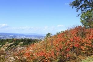 秋の若草山と奈良市街の写真素材 [FYI04772592]