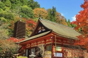 紅葉の談山神社の写真素材 [FYI04772612]