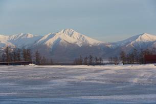 融雪剤が撒かれた雪の畑の写真素材 [FYI04773308]