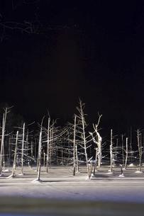 ライトアップされた冬の夜の湖の写真素材 [FYI04773313]