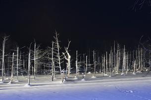ライトアップされた冬の夜の湖の写真素材 [FYI04773314]
