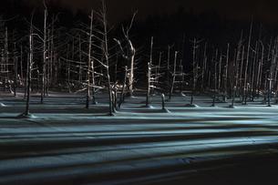 ライトアップされた冬の夜の湖の写真素材 [FYI04773315]