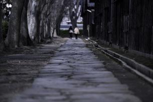山形県酒田市 山居倉庫の散歩道の写真素材 [FYI04773359]