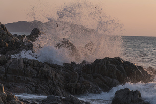 玄界灘の荒波の写真素材 [FYI04773529]