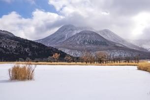大分県 飯田高原の雪景色の写真素材 [FYI04773567]