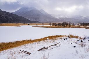 大分県 飯田高原の雪景色の写真素材 [FYI04773569]