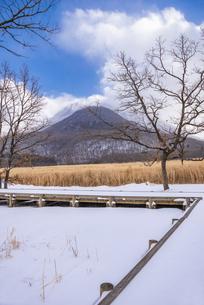 大分県 タデ原湿原の雪景色の写真素材 [FYI04773571]