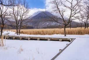 大分県 タデ原湿原の雪景色の写真素材 [FYI04773572]