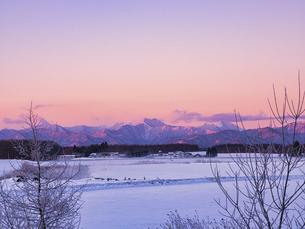 日高山脈と朝焼けの写真素材 [FYI04773647]