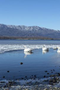 北海道 屈斜路湖の冬の風景の写真素材 [FYI04773748]