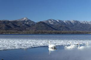 北海道 屈斜路湖の冬の風景の写真素材 [FYI04773751]