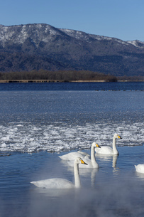 北海道 屈斜路湖の冬の風景の写真素材 [FYI04773764]