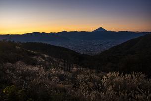 朝日の富士山と秋のススキ、山梨市街の写真素材 [FYI04773818]