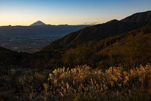 朝日の富士山と秋のススキ、山梨市街の写真素材 [FYI04773845]