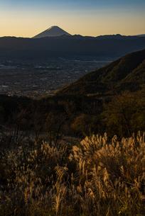 朝日の富士山と秋のススキ、山梨市街の写真素材 [FYI04773846]