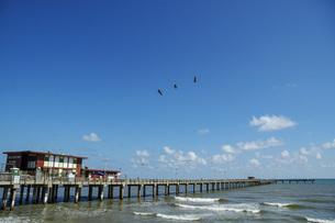 海辺の桟橋のある風景の写真素材 [FYI04773852]