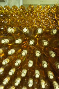 ワインの瓶詰めの写真素材 [FYI04773927]
