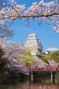 春の姫路城と赤い橋の写真素材 [FYI04773937]