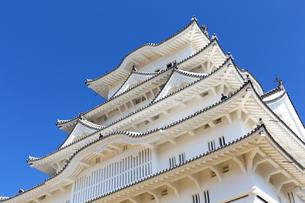 新生姫路城の写真素材 [FYI04773978]