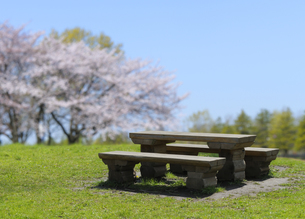 公園のピクニックテーブルと椅子の写真素材 [FYI04773998]