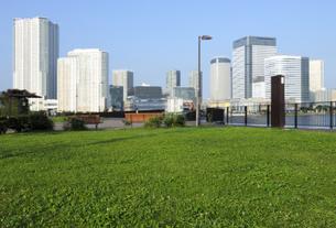 公園の草地の広場と高層タワーマンション群の写真素材 [FYI04774006]