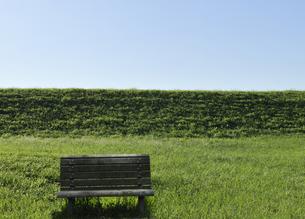 草原と木製のベンチの写真素材 [FYI04774010]
