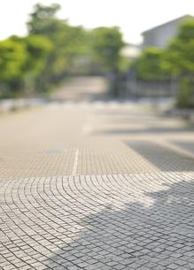 住宅街の石畳の車道の写真素材 [FYI04774015]