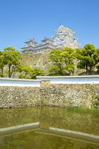 新緑の新生姫路城の写真素材 [FYI04774051]