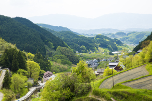 奈良県明日香村の田園風景の写真素材 [FYI04774077]