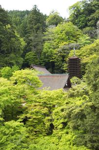 新緑の談山神社全景の写真素材 [FYI04774078]