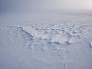 雪原の写真素材 [FYI04774282]