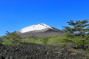 岩手山と焼走り熔岩流の写真素材 [FYI04774397]