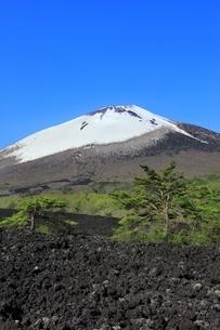 岩手山と焼走り熔岩流の写真素材 [FYI04774398]