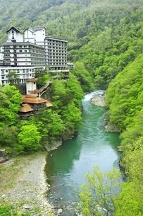 新緑の芦ノ牧温泉の写真素材 [FYI04774402]