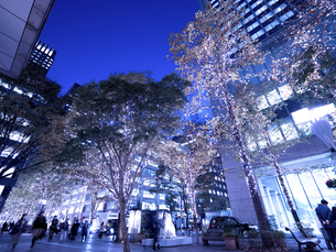 東京都 丸の内仲通りのイルミネーションの写真素材 [FYI04774656]