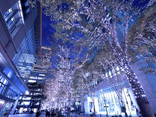 東京都 丸の内仲通りのイルミネーションの写真素材 [FYI04774661]