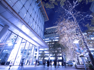 東京都 丸の内仲通りのイルミネーションの写真素材 [FYI04774665]