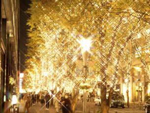 東京都 丸の内仲通りのイルミネーションの写真素材 [FYI04774670]