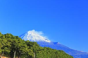 三保の松原より冠雪の富士山の写真素材 [FYI04774851]