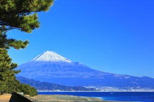 三保の松原より冠雪の富士山の写真素材 [FYI04774856]