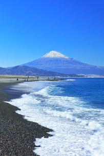 三保の松原より冠雪の富士山の写真素材 [FYI04774862]