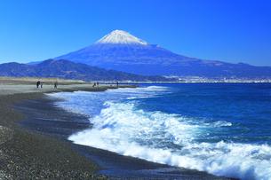 三保の松原より冠雪の富士山の写真素材 [FYI04774863]